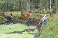 natuurwerkgroep_de_groene_knoop_poel_schoonmaken