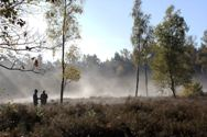 Raatakkers aan de Panoramaweg in Bennekom