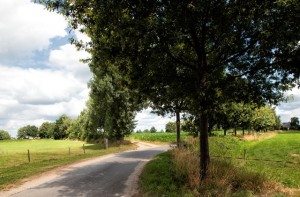 landschapZelhem1